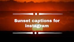 100+ awesome sunset captions to share on your Instagram