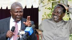 Raila Odinga Will Get 80% of Mt Kenya Votes, Maina Kamanda