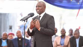 """Ruto's Allies Come Clear on Plot to Impeach Uhuru after BBI Court Verdict: """"We've No Intentions"""""""