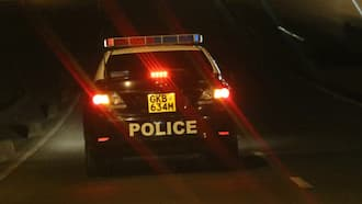 Nairobi: DCI Sleuths Nab Naked Couples after High Octane Car Chase at Night