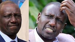 Kichwa cha DP Ruto Kimejaa Mawazo, Chris Wamalwa Atabiri Kitakachotokea Karibuni