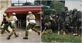 The three special GSU, KDF and DCI forces involved in DusitD2 operation