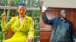 Socialite Huddah Monroe offers to bail out man who headbutted cop in court