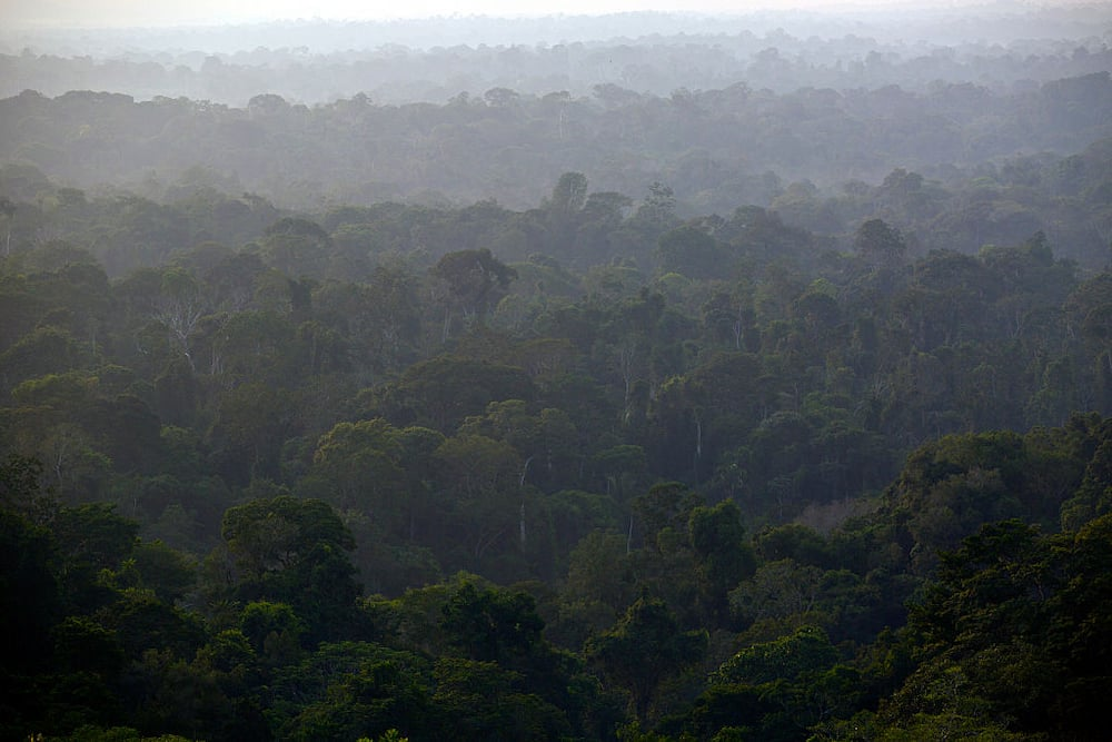 most dangerous jungles in the world