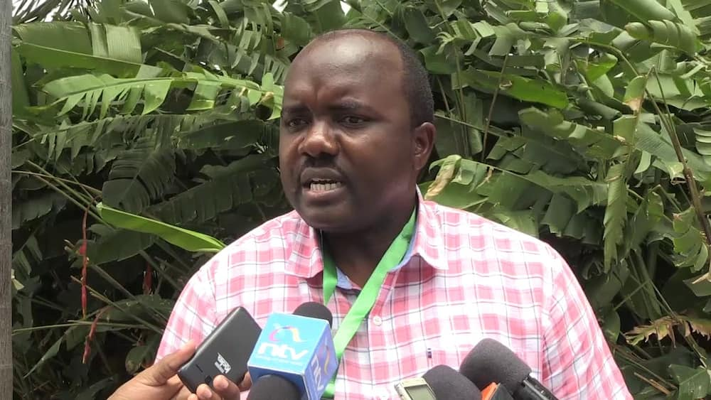 Butere MP Tindi Mwale says he will step down to allow Oparanya clinch deputy PM position