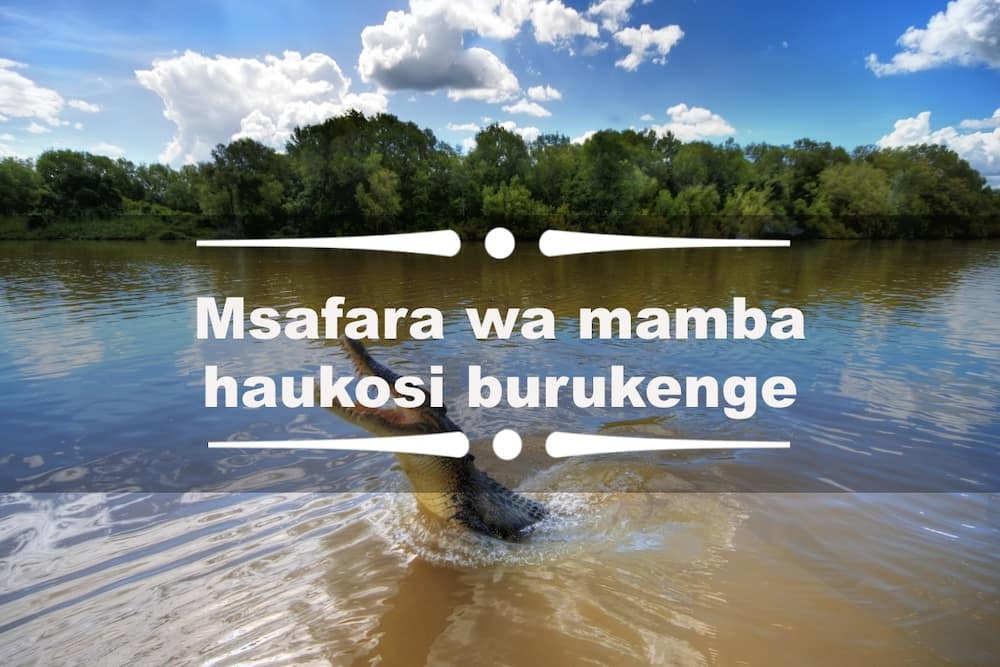 funny Swahili quotes
