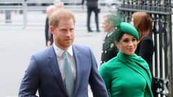 Prince Harry, Meghan Markle May Choose American Godparents for Baby Lilibet Diana