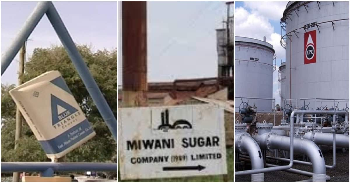List of government parastatals lined up for sale to raise funds