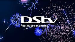 DStv French Plus package: channel list and subscription cost