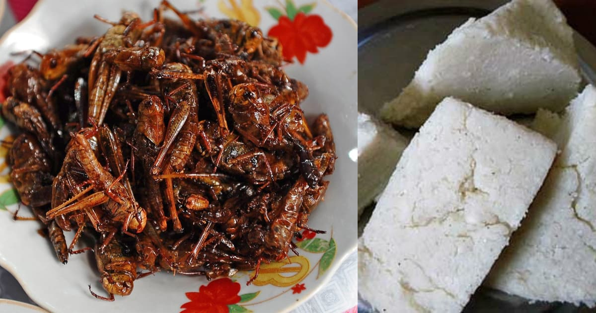 Do not eat desert locusts: Bungoma residents warned as insects hit the area