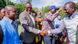 Johnstone Muthama, Veronica Maina among 31 UDA Officials to Run 2022 Political Affairs