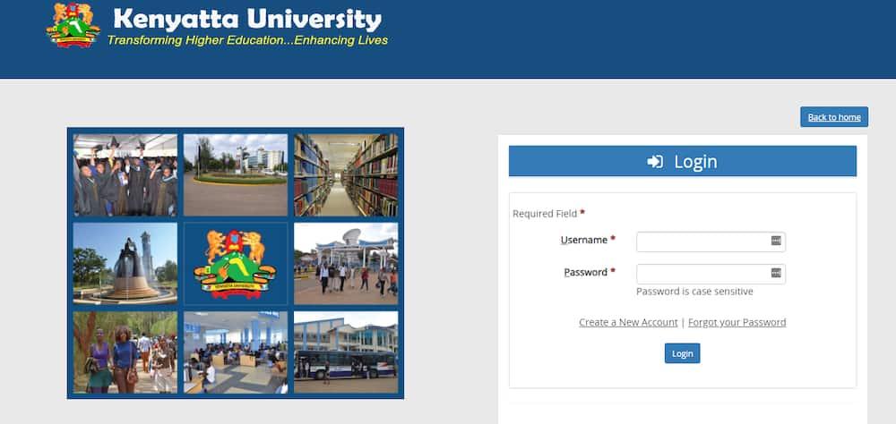 KU student portal account creation