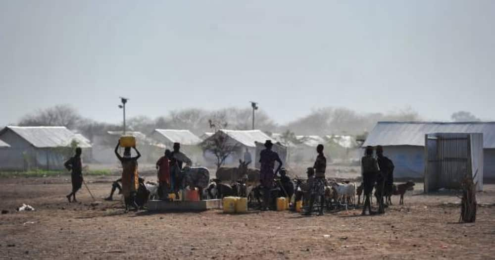 Court Temporarily Stops Gov't from Closing Dadaab, Kakuma Refugee Camps as Ultimatum Period Lapses