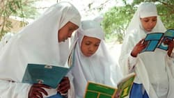 Grade 1: List and Cost of Books CBC Pupils are Required to Have as Schools Reopen
