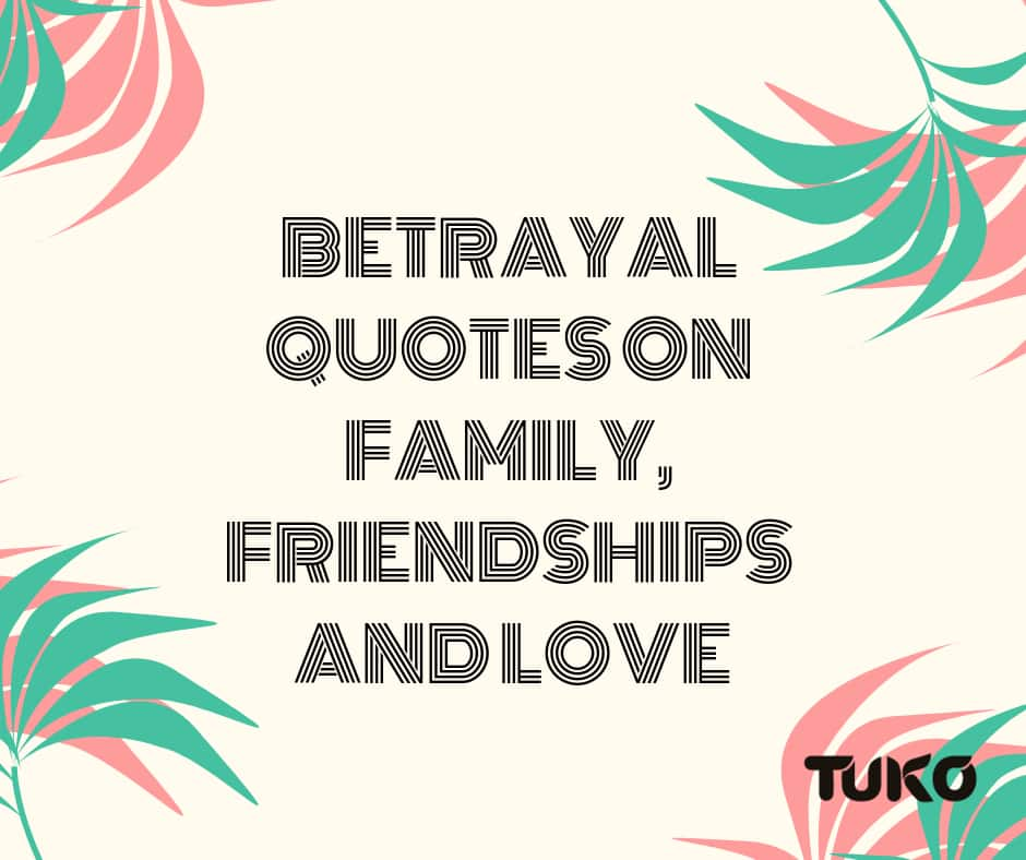 betrayal quotes on family friendships and love ▷ tuko co ke