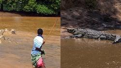 Jimnah Partet: KWS Suspends, Arrests Officer For Demanding Bribe From Crocodile Attack Victim