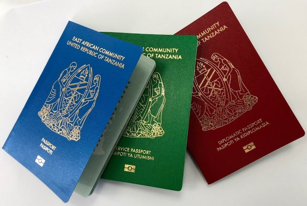 Immigration Tanzania passport application, contacts, forms
