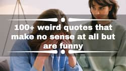 100+ weird quotes that make no sense at all but are funny