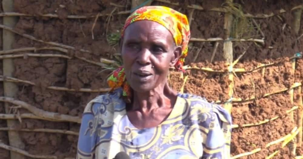Kakamega Widow Living in Shanty Elated After Journalists Build Her Better House