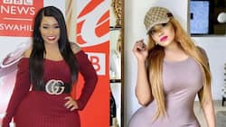 On to the next one: Vera Sidika confirms she's bagged a new lover