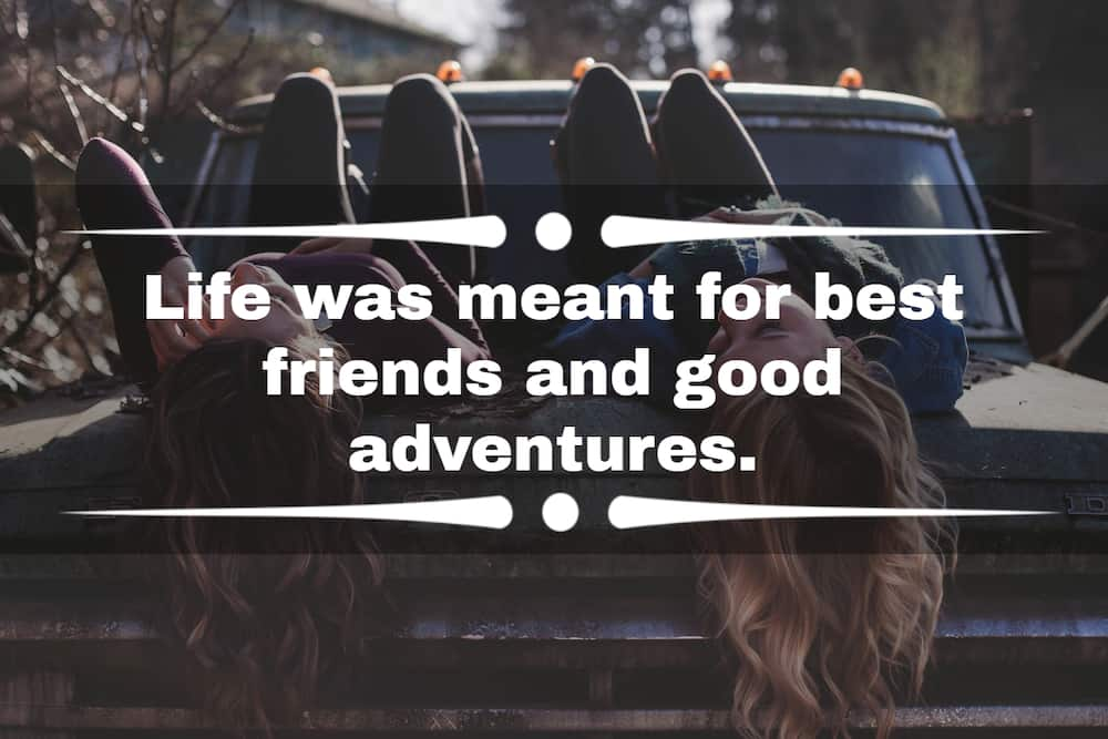proverbs on friendship