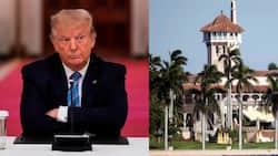 Donald Trump begins looking for defence lawyers ahead of impeachment trial