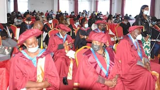 Testimonials Overflow as VIPs, Top Politicians Graduate Based on Talent, Life and Work Experience