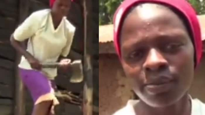 Girl Who Scored A- in 2020 KCSE Turns to Splitting Firewood after Failing to Join University