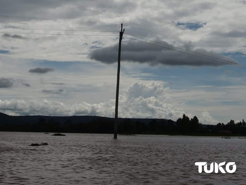 Mto Nzoia