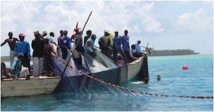 Wavuvi 16 wa Tanzania wanaswa kenya kwa kupita mpaka