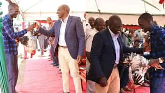 Student Who Gifted William Ruto Chicken Pleads With Him to Fulfil School Fee Pledge