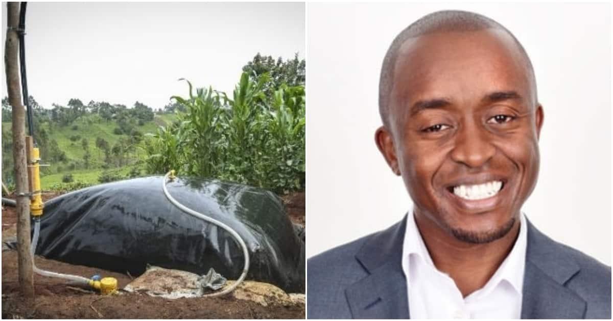 Kenyan social entrepreneur selected among top 40 under 40 African investors