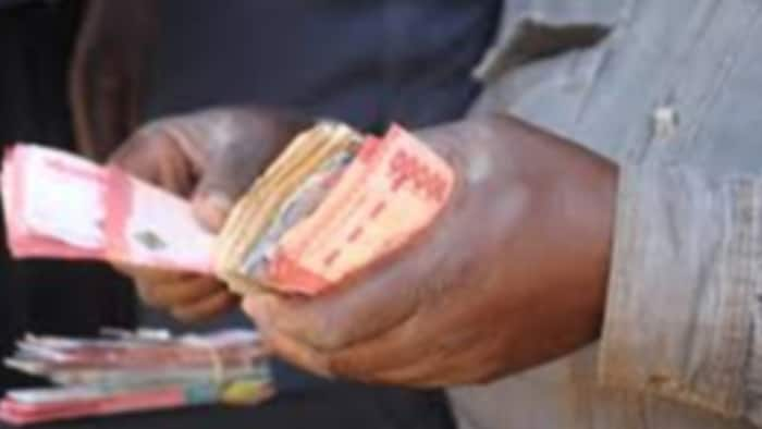 CBK Blames Kenyans for Mishandling New Currency, Causing Significant Wear and Tear