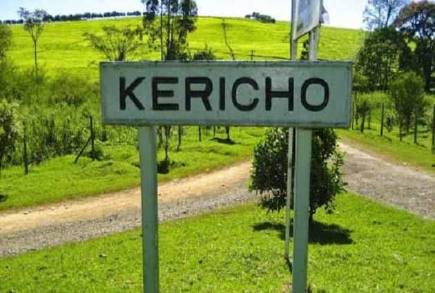 Kericho KCPE finalist elopes with man days after receiving results