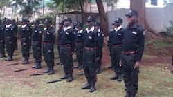 Kileleshwa: Bawabu Alishwa Kofi kwa Kufuata Mke wa Tajiri Wake
