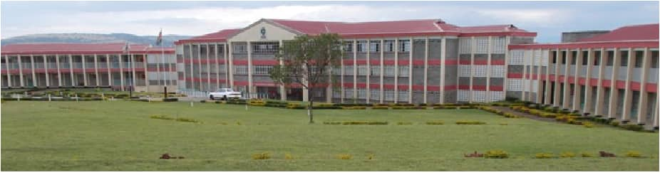 Rift Valley Institute of Science and Technology