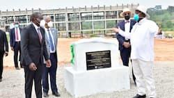 William Ruto, Museveni Lay Foundation Stone of Vaccine Facility during DP's Uganda Visit