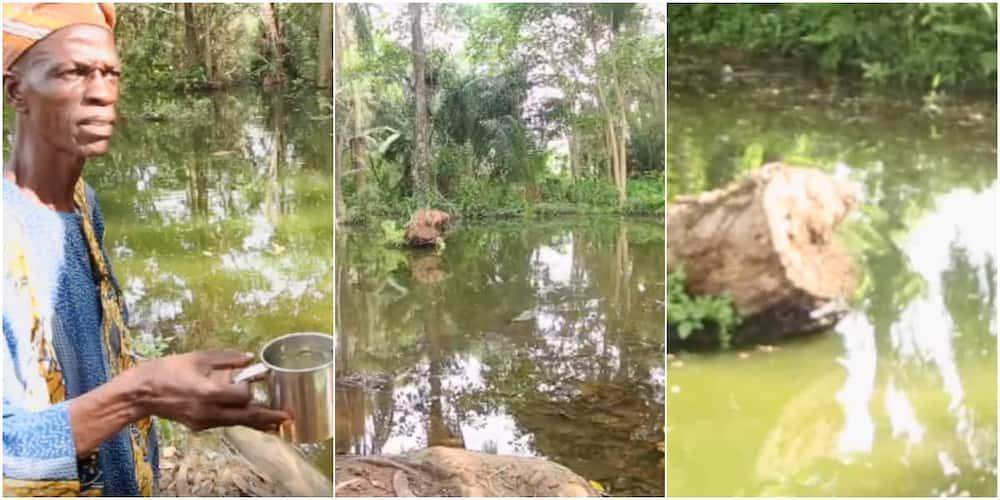 Lake Sogidi is located in Awe, a town in Oyo state. Photo: Screengrabs: BBC Yoruba.
