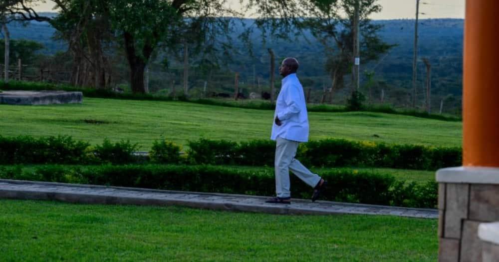 Photo of Yoweri Museveni Running to Meeting Tickles Netizens