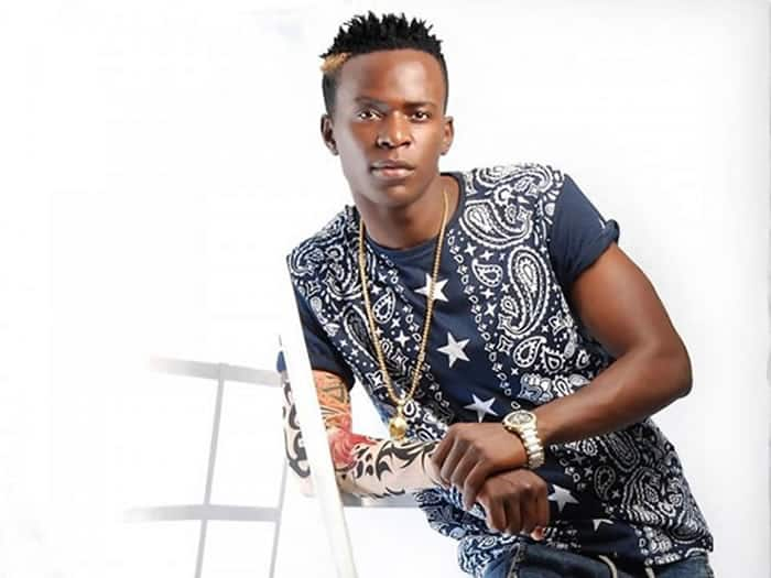 Willy Paul