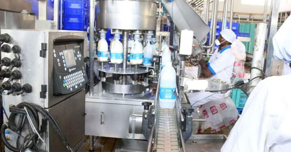 Kenyatta family owned Brookside wins KSh 12M in debt row with Meru dairy group