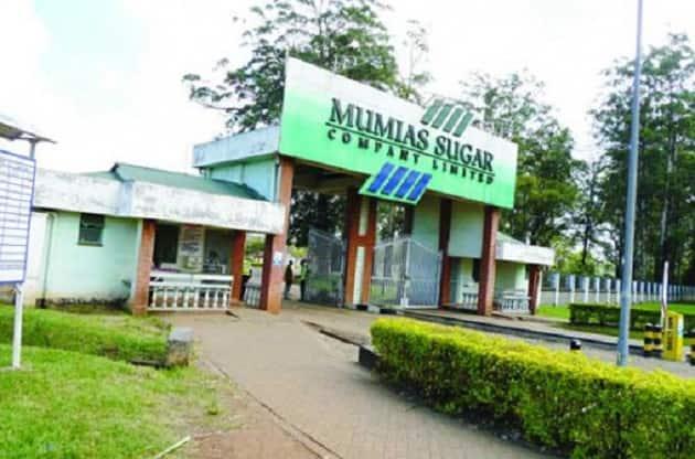 CS Rashid Echesa accuses Musalia Mudavadi's company over fall of Mumias Sugar