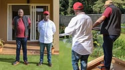 Kupanga kazi: Hisia mseto baada ya Rais Uhuru kukutana na Kabogo