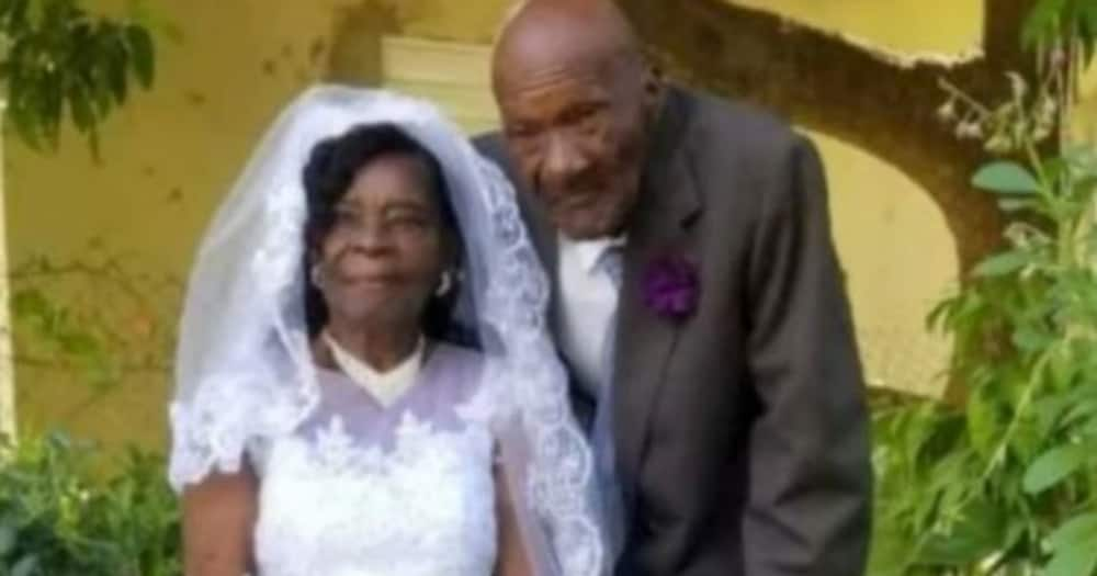 Woman, 91, weds 73-year-old boyfriend after dating for 10 years