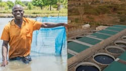 East Africa's First Aquaculture Academy to Boost Fish Production Begins Operations in Kenya