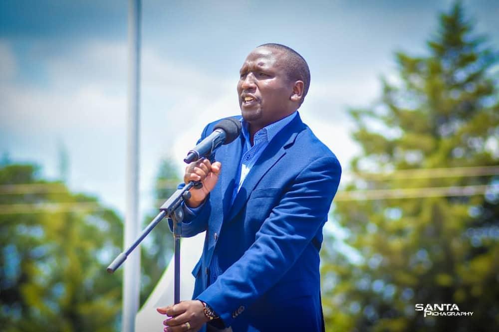 Seneta Cheruiyot afichua walivyocheza kadi zao ili kushinda ujanja 'System' katika Seneti