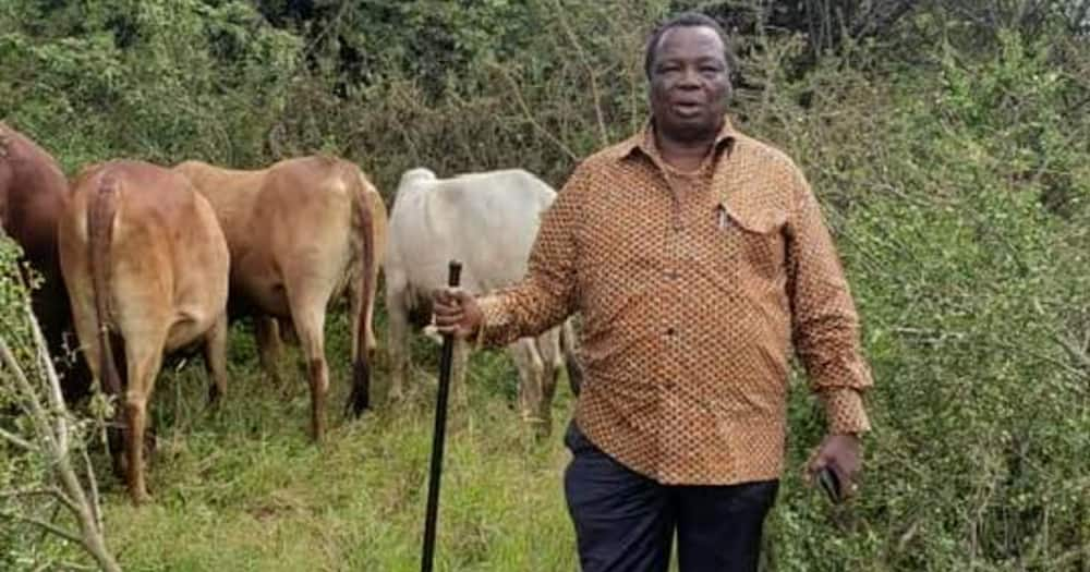Francis Atwoli Asks Gov't to Crack The Whip on Illegal Employment Agencies