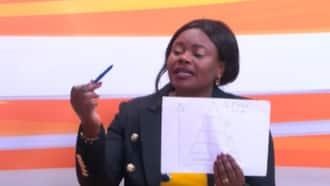 """Gathoni Wamuchomba Uses Diagram to Explain Much-Hyped Bottom-Up Model: """"Tumeficha White"""""""