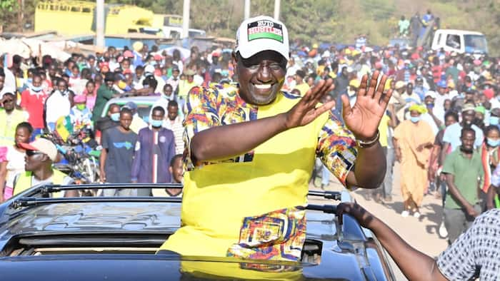 William Ruto's Promise of 4 Million Jobs Yearly for Unemployed Youths Is Not Sustainable, Says Mark Bichachi