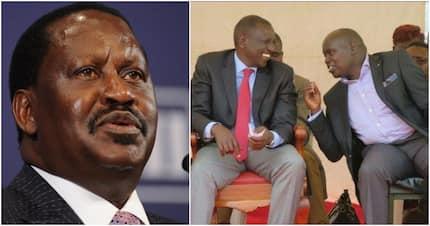 Nandi senator says Ruto's 2022 presidential bid is a must, not a request